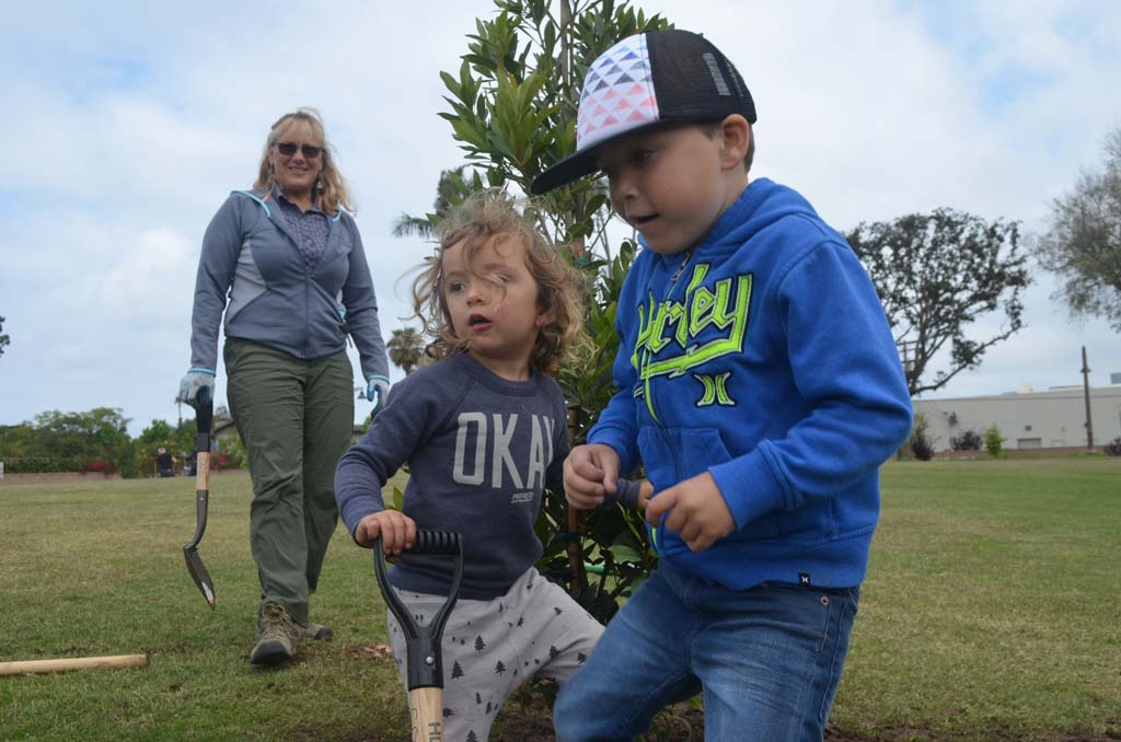 "Caden Lasho, right, with Kai Usher use their feet to pack down dirt around a newly planted Laurel tree, while Dianne Ervin, an arborist with Western ECI watches on. Caden decided to name the tree ""Peaches."" Photo by Tony Cagala"