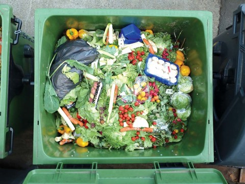 Encinitas takes step to prepare for green waste recycling mandate