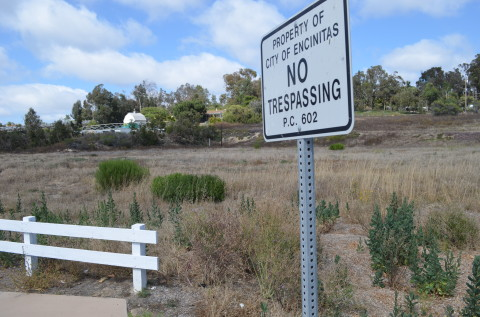 Council moves ahead with housing sites