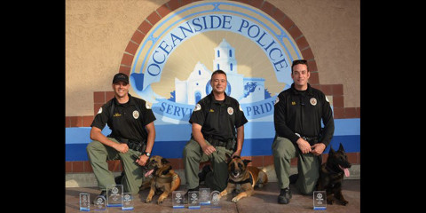 Police K-9s receive bulletproof vests