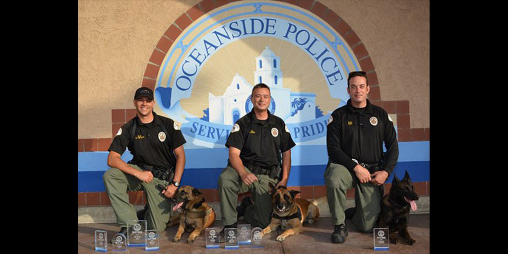 Oceanside Police Officers and their K-9 partners from left: Officer Smith and K-9 Nero, Officer Hay and K-9 Gonzo and Officer Wilson and K-9 Atlas compete in Bakersfield, Calif. in June. The Oceanside Elks Club donated two bulletproof vests for the K-9s last month. Photo courtesy Oceanside Police Department