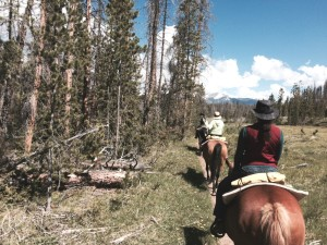 Trail rides out of Winding River Resort near Grand Lake take visitors through Rocky Mountain National Park, celebrating its centennial this year. Late rains and snows have made the scenery this year particularly beautiful.