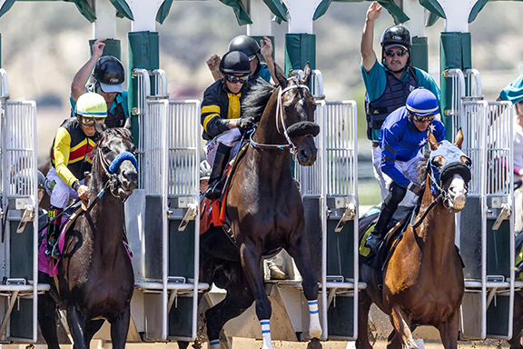 Horses take off from the starting gate during the first race of opening day at Del Mar racetrack. Photo by Bill Reilly