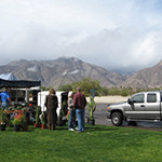 Christmas Circle, the iconic grassy park in Borrego Springs, is the site of the 50th Borrego Days Desert Festival the weekend of Oct. 23. (Photo by E'Louise Ondash)