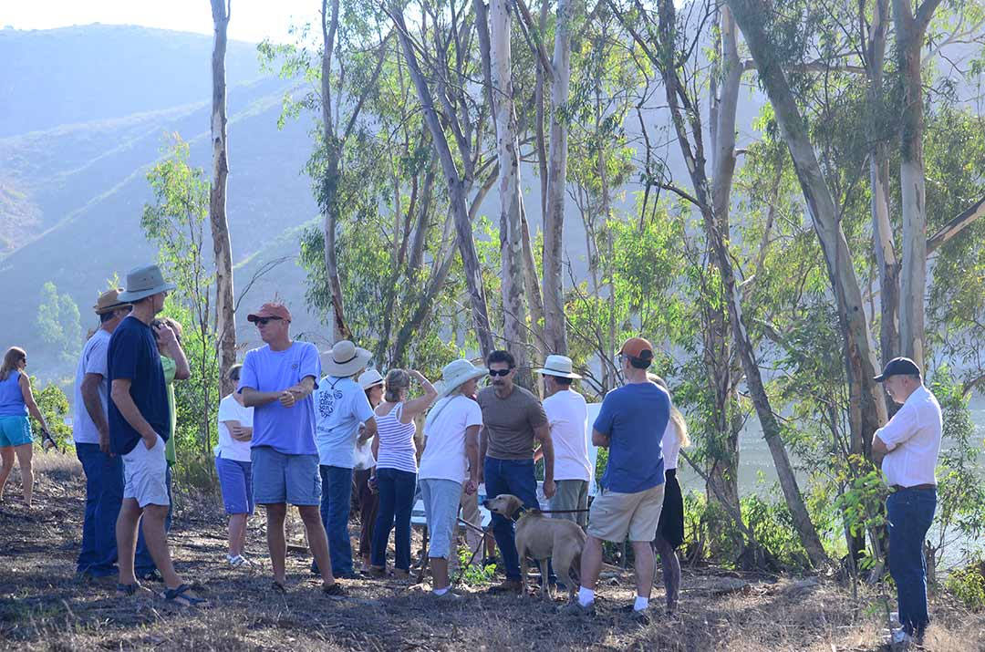 Critics oppose herbicide use, tree removal at Lake Hodges