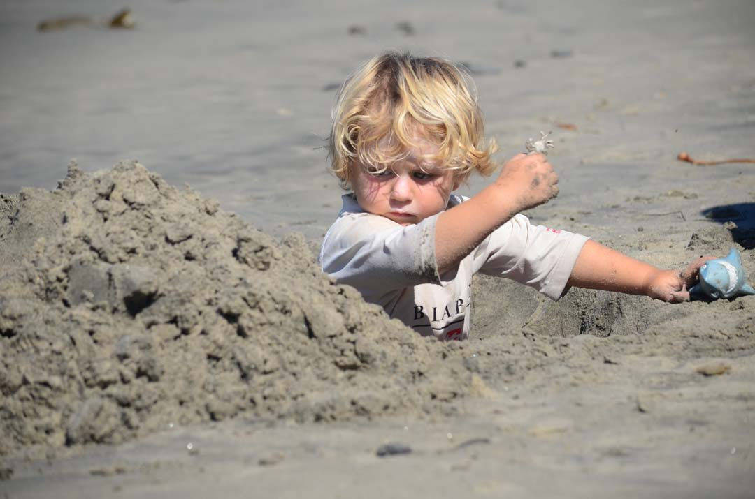 Fuller Phillipy, 3, plays in the sand with a crab and his favorite shark. Photo by Tony Cagala