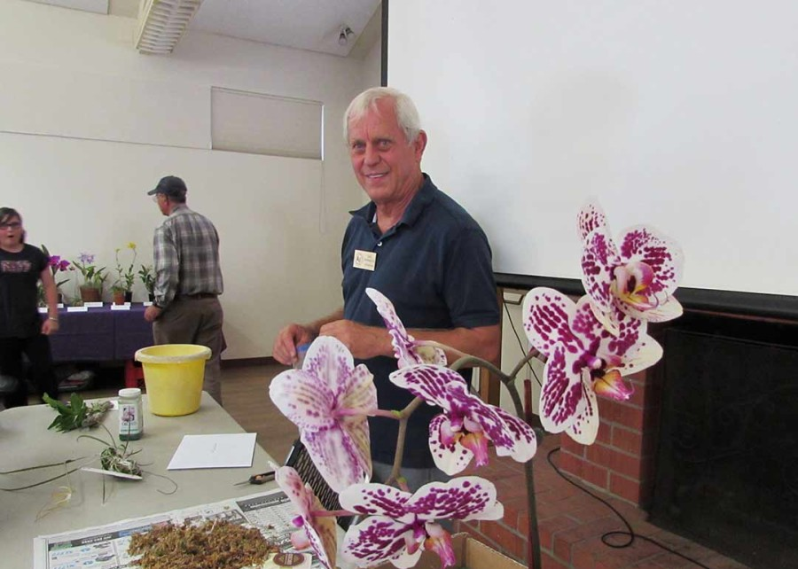 Hobby growers learn all about orchids at San Diego Botanic Garden