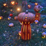 Intricately carved pumpkins at the 11th annual Great Jack O'Lantern Blaze are created under the direction of artist and sculptor Michael Natiello. Carvers create 10,000 pumpkins during the seven-week extravaganza.