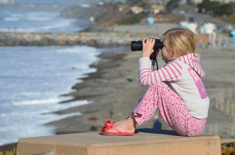 Whale watching gets educational component from state parks, volunteers