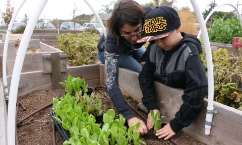 Civic group celebrates 1 year with community project