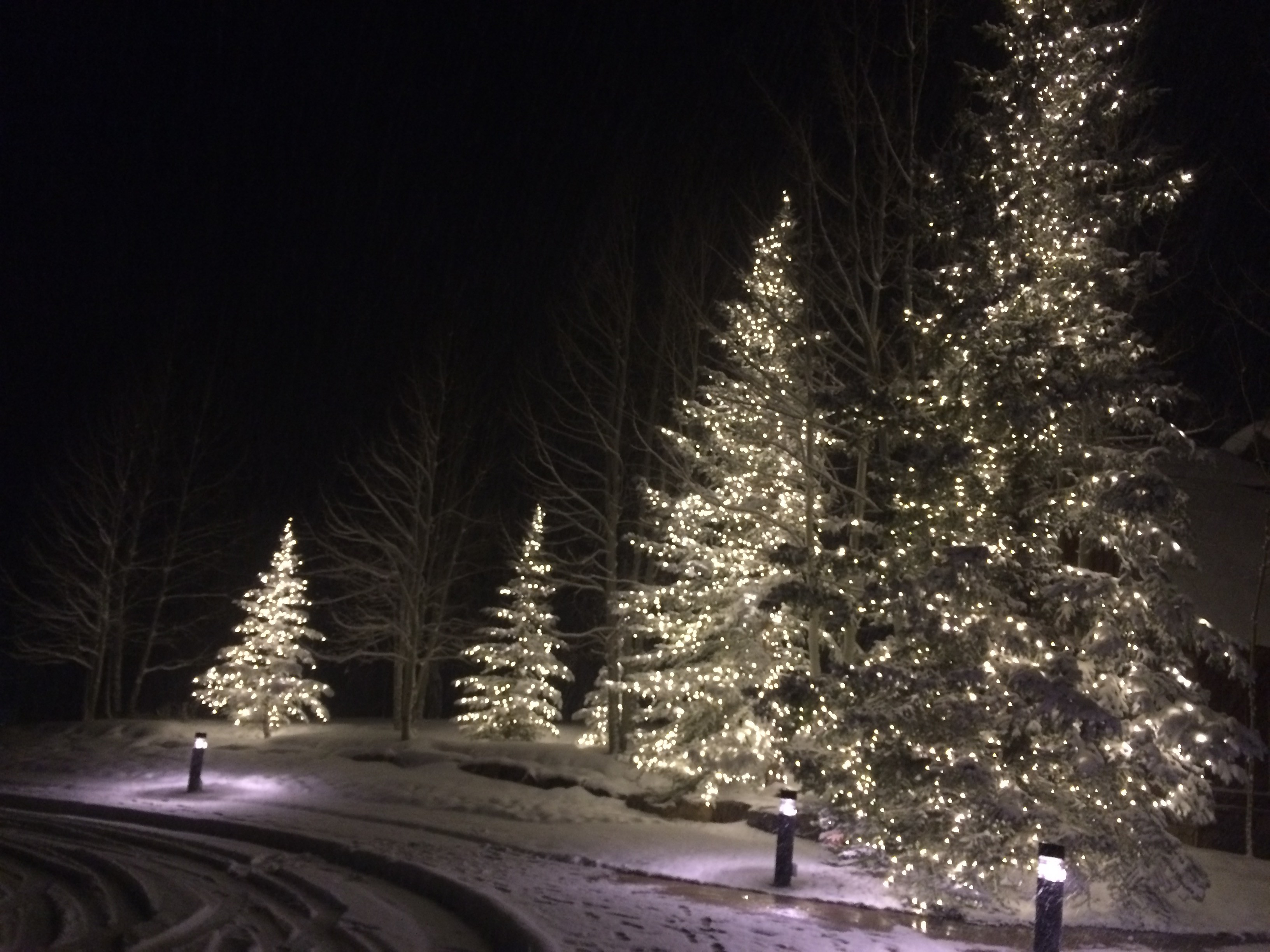 The mountain communities along Interstate 70 west of Denver leave the decorative tree lights on all winter. These are on the grounds of the Club at Cordillera, a golf resort near Edwards, Colo.