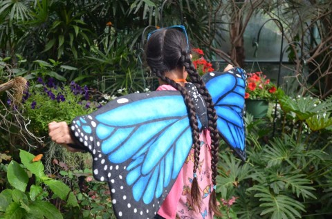 It's a jungle in there: Park opens butterfly exhibit