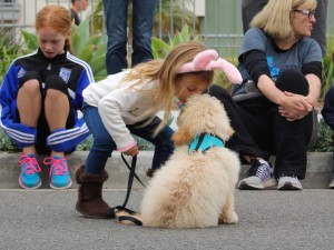 Marina Burckin, 5, of Encinitas, gives a friend's dog encouragement before the race. The Encinitas Mile is one of the few mile long road races. Photo by Promise Yee
