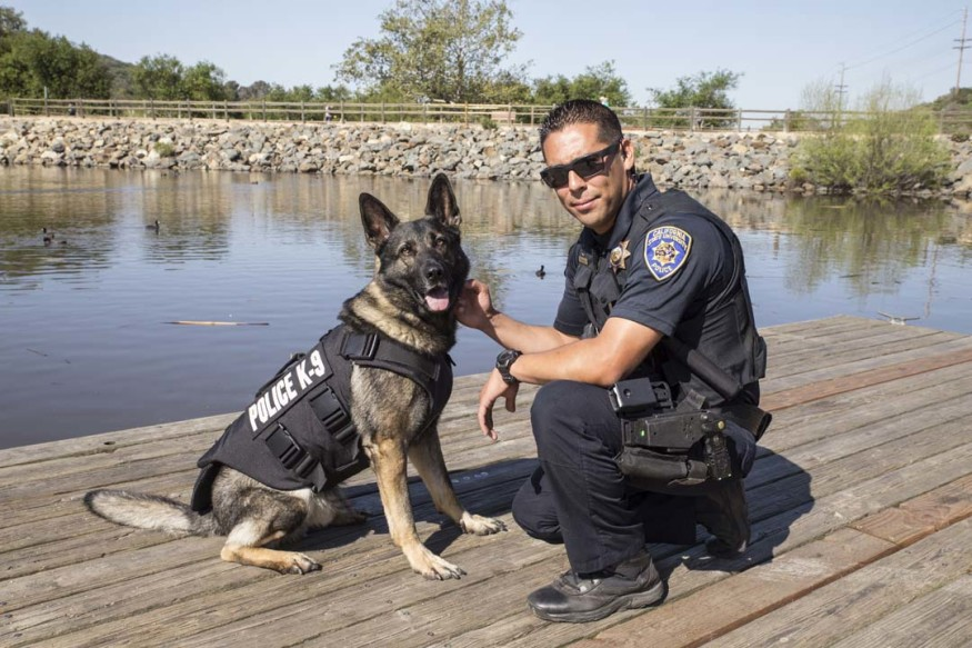 CSUSM Police Officer David Angulo, right, with his K-9 explosive detection dog Armor, who recently received a ballistic protection vest from Vested Interest in K9s Inc.  Courtesy photo