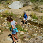 Brian and Sandy Fitzpatrick of Ladera Ranch in Orange County cross a narrow creek that flows along Palm Canyon Trail. It is their first visit to Anza Borrego Desert State Park, the second largest state park in the country.