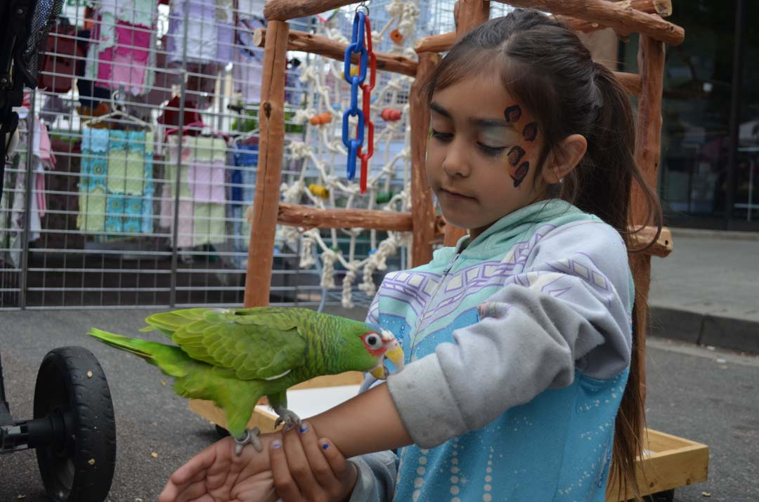 Keira Campbell visits with a parrot out front of A Bird Haven bird store in Escondido. Photo by Tony Cagala