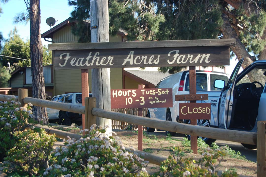 Permits OK'd for Feather Acres subdivision