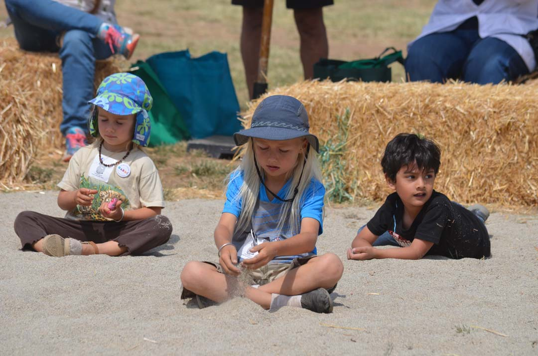 Youngsters play in the sand during one of the live music performances. Photo by Tony Cagala