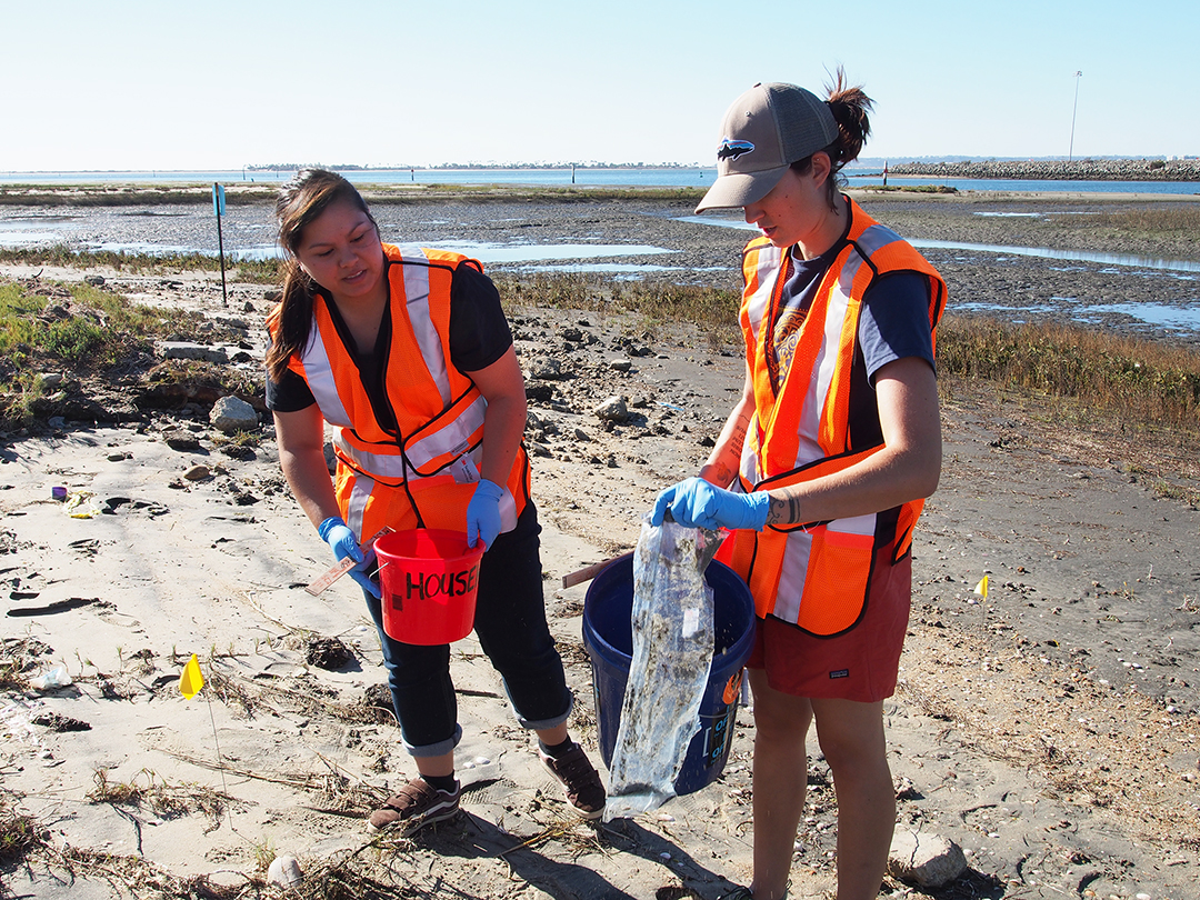 Celebrate Ocean's Day with Coastkeeper clean up