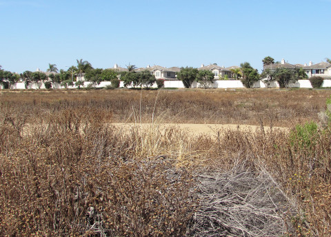 Development plans stalled on Carlsbad land