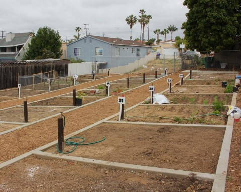 Community garden finds new home