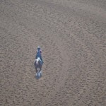 A lone rider finds some quiet time on the track on Tuesday. Photo by Tony Cagala