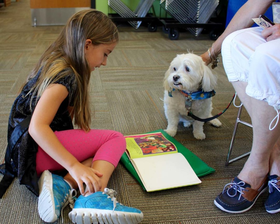 Paws to Read pairs dogs with early readers