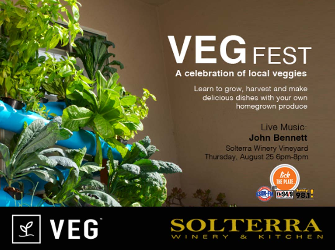 Lick the Plate: VEG Fest to celebrate easy and bountiful home gardening