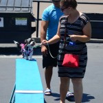 Nicole Marcial, Alexander Marcial let their dog Daisy try out an obstacle. Photo by Tony Cagala