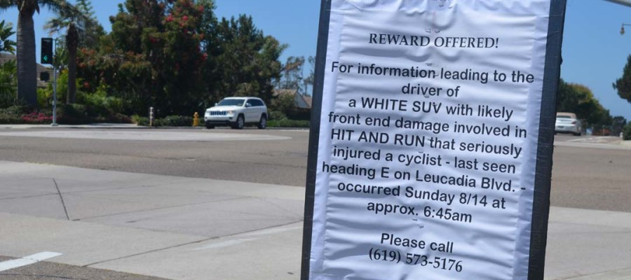 Reward offered in  hit-and-run of cyclist