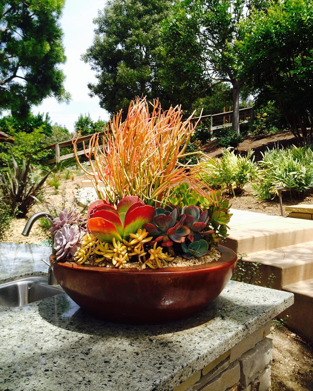 Artistic container gardens and landscapes