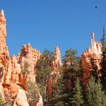 The colorful rock formations in Bryce Canyon National Park in southern Utah provide an other-worldly experience for visitors and a lesson in the forces of nature. Because it is more isolated and elevated (the rim is at 9,000 feet), Bryce receives fewer visitors than nearby Zion National Park, but the extra effort to reach it is worth it. (Photo by Jerry Ondash)