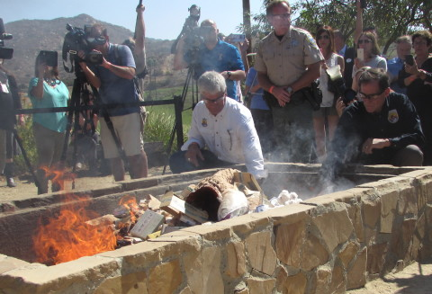 Rhino horns burned in effort to raise awareness, stop poaching