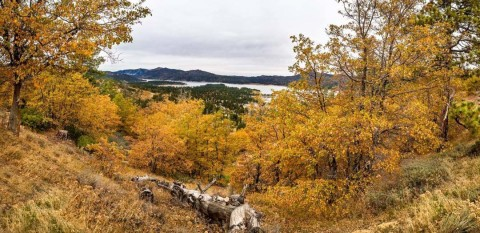 Hit the Road: Finding fall in the West