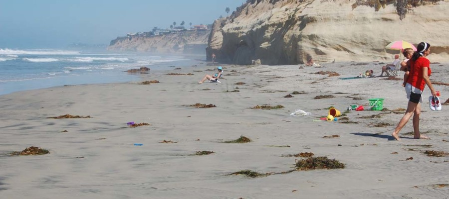 Encinitas, Solana Beach officials lobby in D.C. for sand