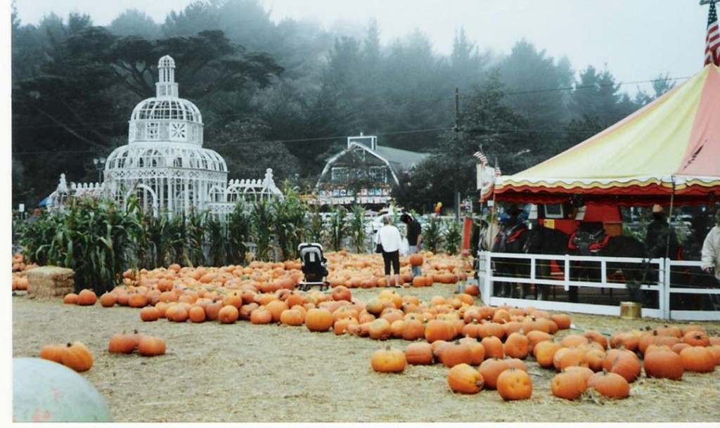 Everything pumpkin is celebrated every autumn in Half Moon Bay, 35 miles south of San Francisco. This year, the 46th Annual Half Moon Bay Art & Pumpkin Festival will be held Oct. 15 and Oct. 16. Courtesy photo