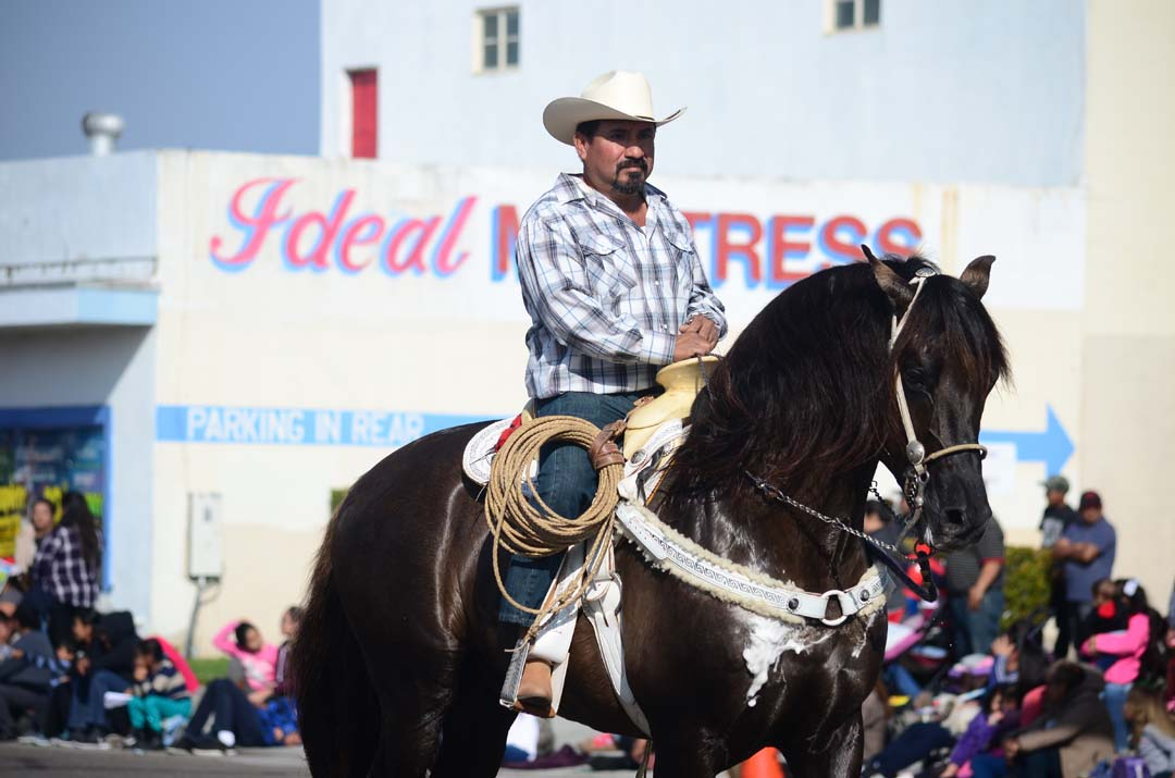 A vaquero rides down Broadway on his horse during the 66th annual Christmas Parade. Photo by Tony Cagala
