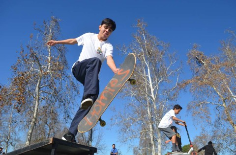 Escondido to hear on proposed skate park