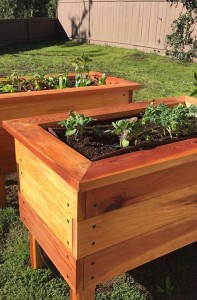 An example of raised garden beds created by Ecology Artisans. Courtesy photo