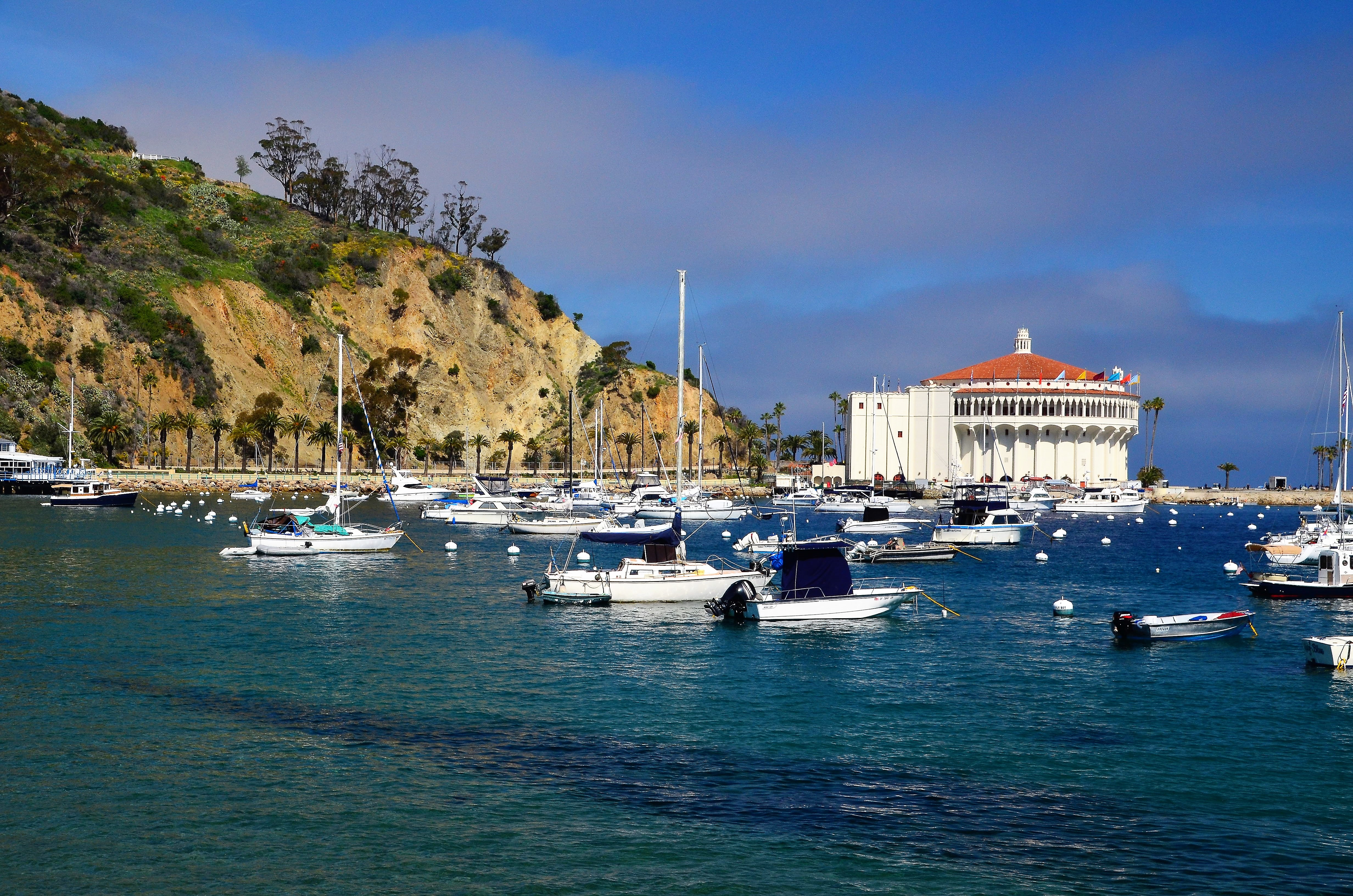 This view of Avalon Harbor and the landmark Casino greets passengers as they disembark from Catalina Express ferries. The dock and most of the town's attractions are within walking distance, and cars are forbidden in certain areas, so Avalon a pedestrian-friendly town.