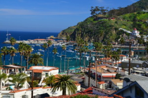 Hit the Road: Chronicling the storied history of Catalina Island