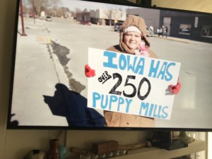 Puppy Mill Protester