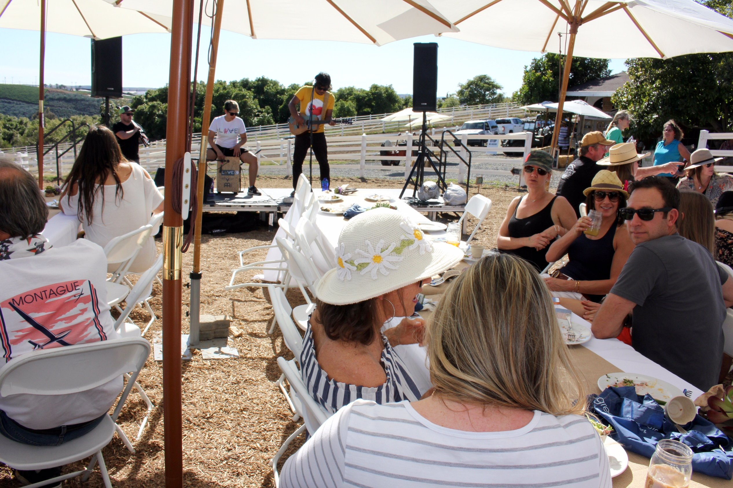 Ticketed guests enjoyed sips, tastes, live music and a view of rolling farmland.