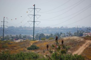 In the name of aircraft safety, San Diego Gas & Electric Co. recently installed about two dozen marker balls on transmission lines that run through Rancho La Costa Preserve, impacting the views of homeowners who live on the perimeter of the Carlsbad canyon. Photo by Bianca Kaplanek