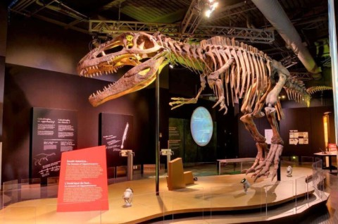 Hit the Road: 'Ultimate Dinosaurs' comes to life at San Diego Natural History Museum
