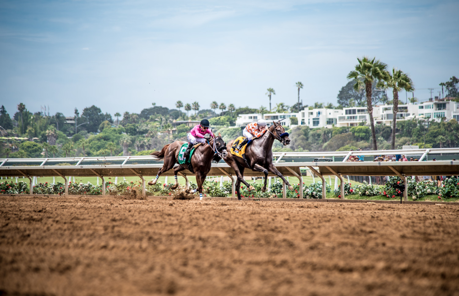 Scenes from Opening Day at Del Mar