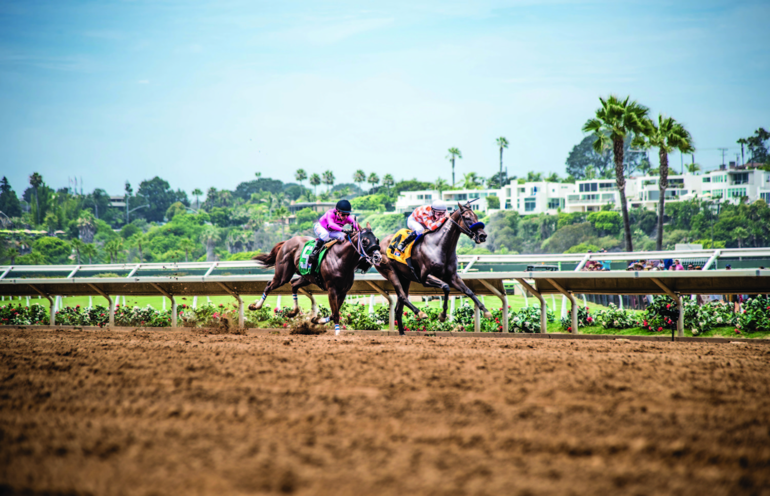 Our Nation wins to open Del Mar meet, Bowies Hero takes Oceanside Stakes