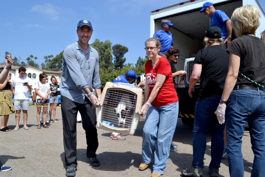 HWAC mobilizes to rescue shelter animals after Hurricane Harvey