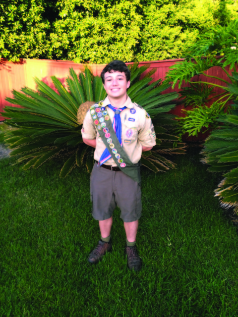 Eagle Scout makes local history come alive online