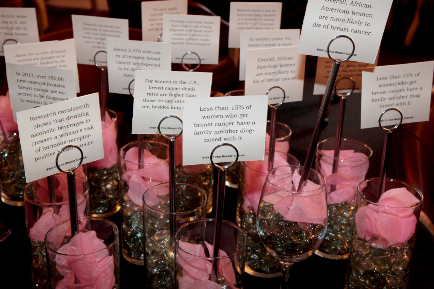 Step Up For Breast Cancer raises nearly $6K